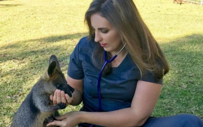 Dr Lopez named Veterinary Thought Leader 2020
