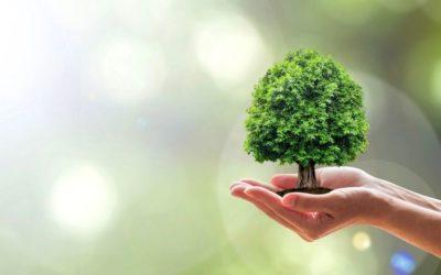 Helping veterinary practices go green!