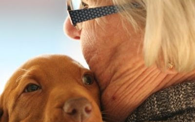 Research shows pet owners will spend thousands to save their pet