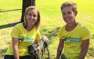 Nominate a volunteer that helps save animal lives